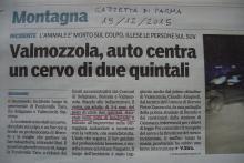 Articolo Gazzetta di Parma del 19 dicembre 2015